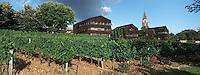 """33 Gironde/Bouliac: Relais & chateau """"Le Saint-James"""" et sa vigne -Architecte Jean Novel"""