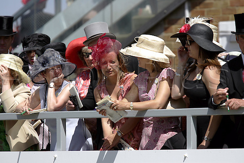 15 June 2004: A lady reading her racecard at Royal Ascot. Photo: Steve Bardens/Action Plus...040615 horse racing fashion hats dress dresses hat