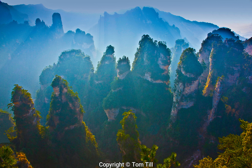 Pinnacles above Huangshi<br /> Zhangjiajie National Forest Park <br /> People's Republic of China<br /> Wulingyuan National Park UNESCO WHS<br /> Rock formations of  quartz-sandstone