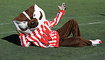 MADISON, WI - OCTOBER 20: Mascot Bucky Badger of the Wisconsin Badgers poses for the camera against the Northern Illinois Huskies at Camp Randall Stadium on October 20, 2007 in Madison, Wisconsin. The Badgers beat the Huskies 44-3. (Photo by David Stluka)