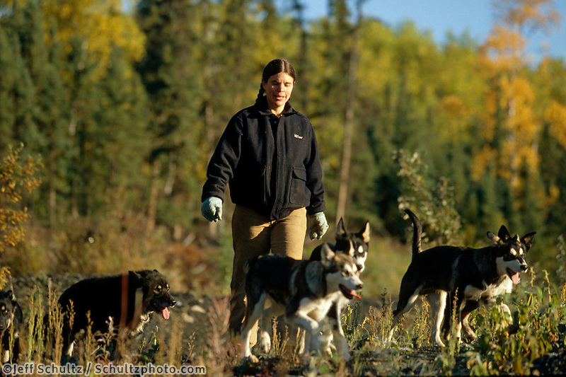 Susan Butcher Walking W/Sled Dogs Manley Alaska Interior