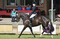 Ridden Classes:  Newcomers - Preliminary- Owner/Rider