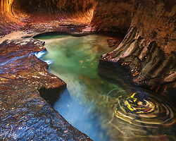 "A long exposure of fall leaves swirling around the emerald pools in ""The Subway"" of Zion National Park."