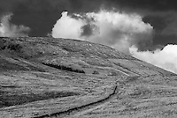 Totridge Fell, Whitewell, Lancashire. Forest of Bowland.
