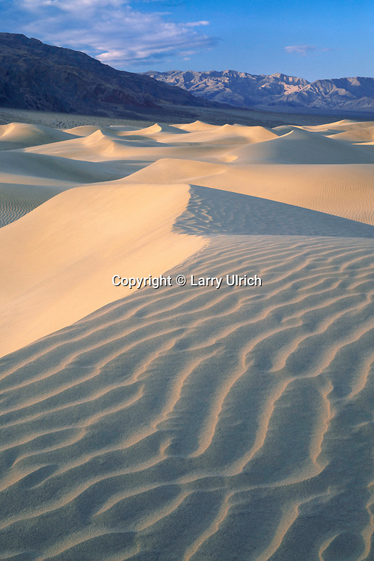 Mesquite Flat Dunes and Panamint Range<br /> Death Valley National Park<br /> Mojave Desert<br /> California