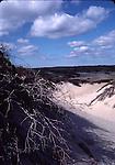Cape Cod, MA.  Scenics