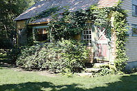A clapboard guest cottage, overgrown with creepers, caters for any summer visitors
