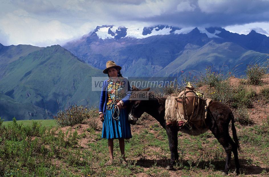 Amérique/Amérique du Sud/Pérou/Moray : Indienne et son âne transportant la chicha , la boisson nationale