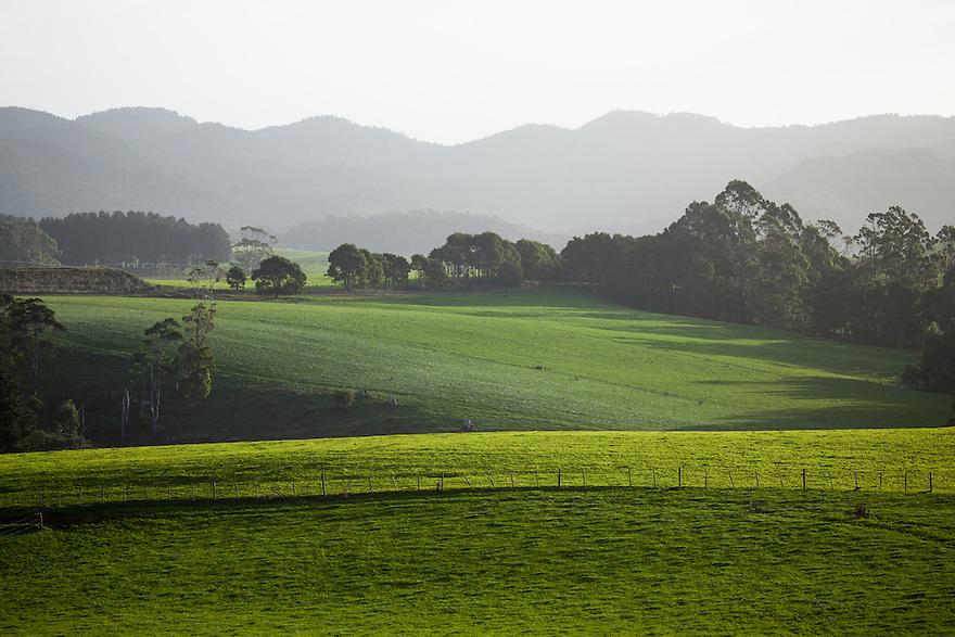 Tasmania Australia.