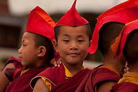 Little Buddhist monks, Sikkim, India