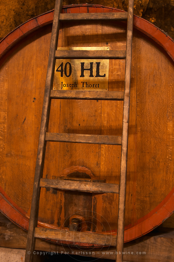 Big wooden vat to store wine, 40 hl hectolitres Joseph Thoret. Ladder leaning against the barrel. Chateau Romanin, Saint Remy de Provence, Bouches du Rhone, Provence, France, Europe
