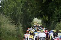 peloton up the Gulperberg (450m/9.3%)<br /> <br /> stage 3: Buchten-Buchten (190km)<br /> 29th Ster ZLM Tour 2015