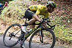 Race leader Yellow Jersey Adam Yates (GBR) Mitchelton-Scott in action during Stage 7 of the Criterium du Dauphine 2019, running 133.5km from Saint-Genix-les-Villages to Les Sept Laux - Pipay, France. 15th June 2019.<br /> Picture: Mario Stiehl/Radsport | Cyclefile<br /> All photos usage must carry mandatory copyright credit (© Cyclefile | Mario Stiehl/Radsport)