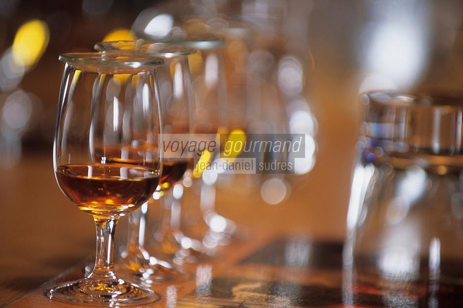 """Europe/Grande-Bretagne/Ecosse/Moray/Speyside/Dufftown : Distillerie """"The Glenlivet"""" - Dégustation de whiskies Single Malt - Verres"""