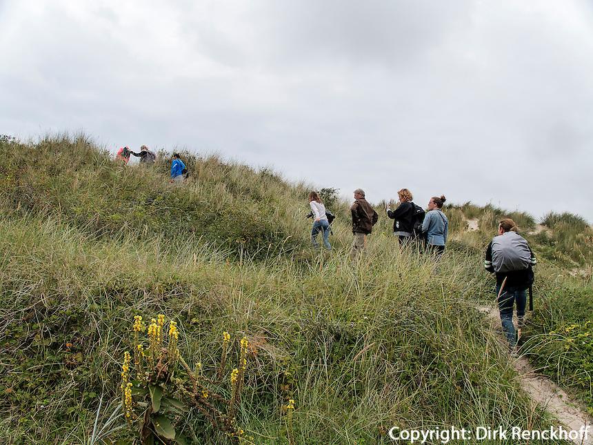 Dünen auf der Insel Schiermonnikoog, Provinz Friesland, Niederlande