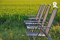 Garden Empty chairs by a green wheat field at sunset (Licence this image exclusively with Getty: http://www.gettyimages.com/detail/81867354 )