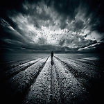 Conceptual image of man walking through ploughed field under flock of birds and stormy sky