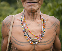 Bajak Toikot, a Mentawai shaman or locally called Sikerei, living in the village of Madobag. The Mentawai are the tribes living traditionally in the island of Siberut, Indonesia. Here, where the changes came slow, some of the people are still living like their ancestors did centuries ago. They s till practice ancient religion called Arat Sabulungan, which believe that everything in the forest has a spirit.