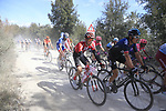 The peloton including Geraint Thomas (WAL) Team Sky on sector 3 Radi during Strade Bianche 2019 running 184km from Siena to Siena, held over the white gravel roads of Tuscany, Italy. 9th March 2019.<br /> Picture: Eoin Clarke | Cyclefile<br /> <br /> <br /> All photos usage must carry mandatory copyright credit (&copy; Cyclefile | Eoin Clarke)