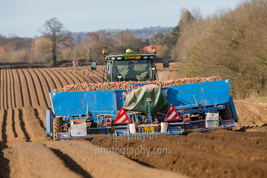 Planting potatoes with a 6 row Standen planter - Norfolk, March
