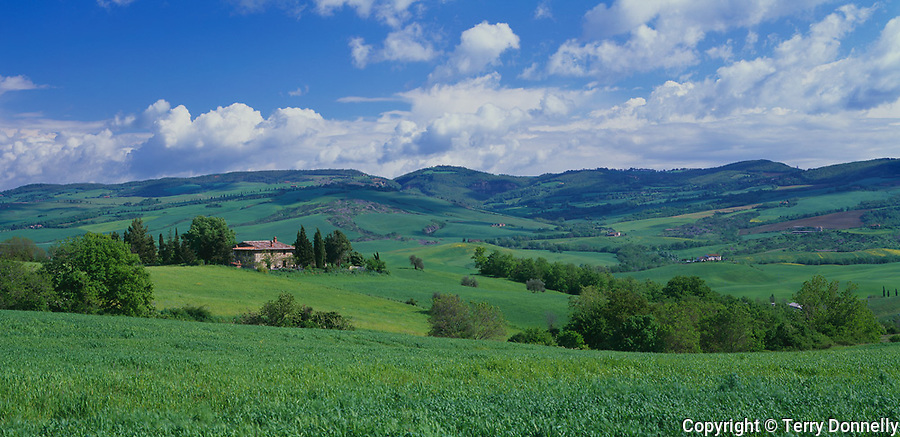 Tuscany, Italy, <br /> Farmhouse (podero) set among the rolling green farms and fields of the Val d'Orcia at Contignano near Pienza