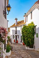 Spanien, Andalusien, Provinz Cádiz, Costa del Sol, Castellar de la Frontera: Castillo de Castellar - enge Gasse   Spain, Andalusia, Province Cádiz, Costa del Sol, Castellar de la Frontera: Castillo de Castellar - narrow lane