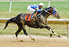 A Student winning at Delaware Park on 7/16/12