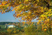 fall, East Montpelier Center, VT, Vermont, Scenic view of farm with yellow barn in East Montpelier Center in the autumn.
