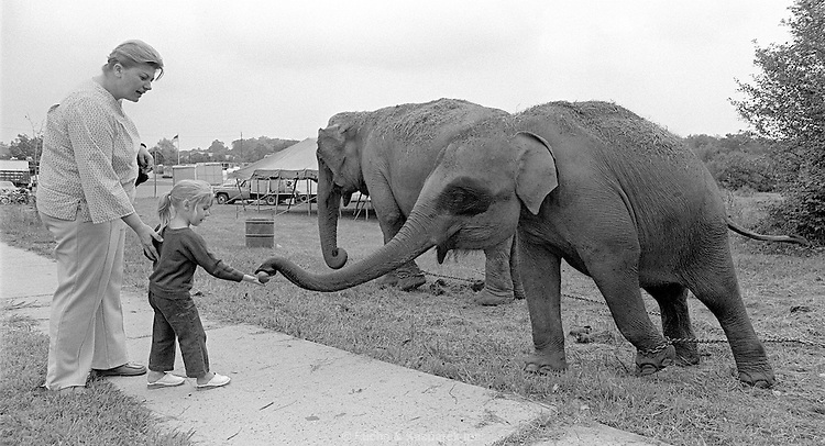 A mother encourages her daughter while feeding an apple to a baby circus elephant. New Jersey, 1975