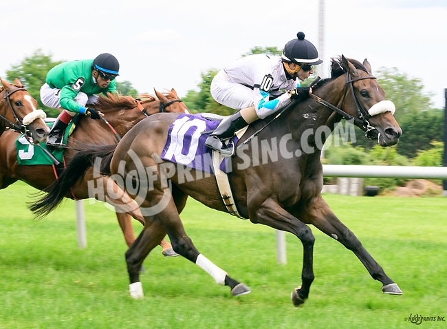 Intractable winning at Delaware Park on 6/8/17