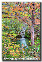 This little gem found at Pedernales Falls State Park in the Texas Hill Country is a short walk from a parking area. However, I have never seen anyone along this trail, so whether you're going to photograph this site or just enjoy a walk in nature, you'll probably have the place to yourself. If you go in November, you'll enjoy the fall colors Texas has to offer.
