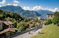 peloton starting the climb towards the Madonna del Ghisallo (754m)<br /> <br /> 114th Il Lombardia 2020 (1.UWT)<br /> 1 day race from Bergamo to Como (ITA/231km) <br /> <br /> ©kramon