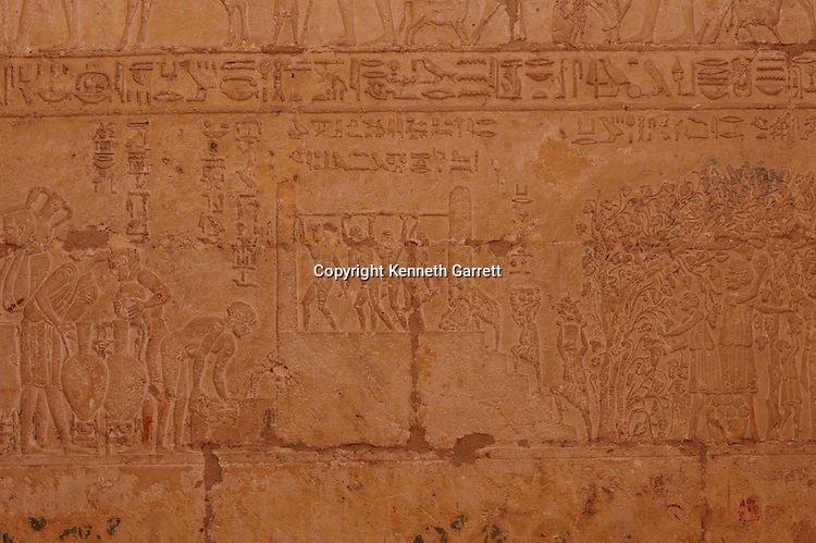 Zahi Hawass Secret Egypt Travel Guide; Egypt; archaeology; El Minya; Tuna el Gebel; Tomb of Petosiris; Late Period, Ankhefenkhons, high priest,Thoth, Hermopolis, Greek style, wine making scene