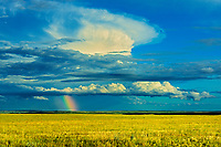 Rainbow and stormy sky over grasslands, Grasslands National Park, Saskatchewan, Canada