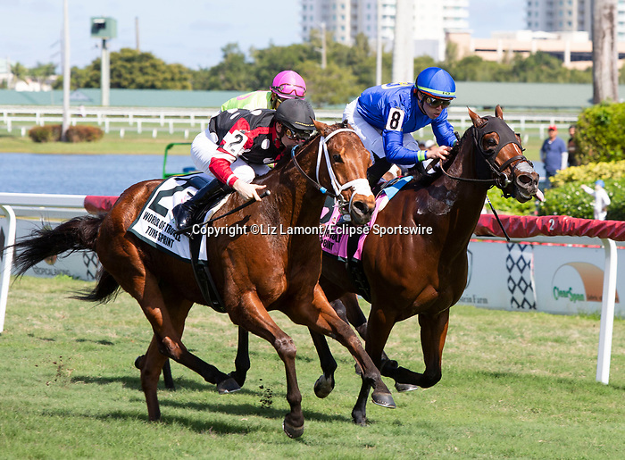 January 25, 2020: #2 Texas Wedge with jockey Flavien Prat on board wins the World of Trouble Turf Sprint Stakes during the Pegasus World Cup Invitational at Gulfstream Park Race Track in Hallandale Beach, Florida. Liz Lamont/Eclipse Sportswire/CSM