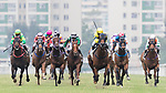 Jockeys riding their horses during Hong Kong Racing at Sha Tin Racecourse on November 04, 2018 in Hong Kong, Hong Kong. Photo by Yu Chun Christopher Wong / Power Sport Images