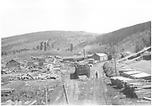 Trinchera Estate Co. lumber mill and yards at Harrell, MP 208.8 on the west side of La Veta Pass.  Narrow gauge tracks of the lumber company and the D&amp;RG standard gauge spur are shown.<br /> Trinchera Estate Co.  Harrell, CO  Taken by McLaughlin &amp; Mclaughlin, E. B. &amp; J. W. - ca. 1915