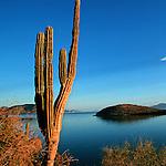 Basse Californie. Mexique. Baja California Mexico.