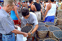 Market Latin America 01