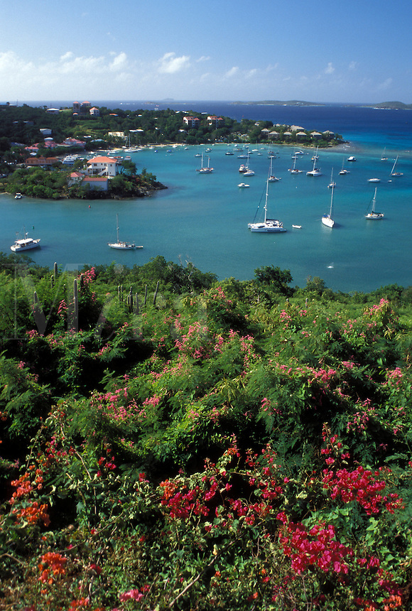Caribbean, St. John, U.S. Virgin Islands, USVI, Scenic view of Cruz Bay on Saint John Island.