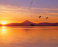 Mt McLoughlin at sunset reflecting in Upper Klamath Lake, Oregon