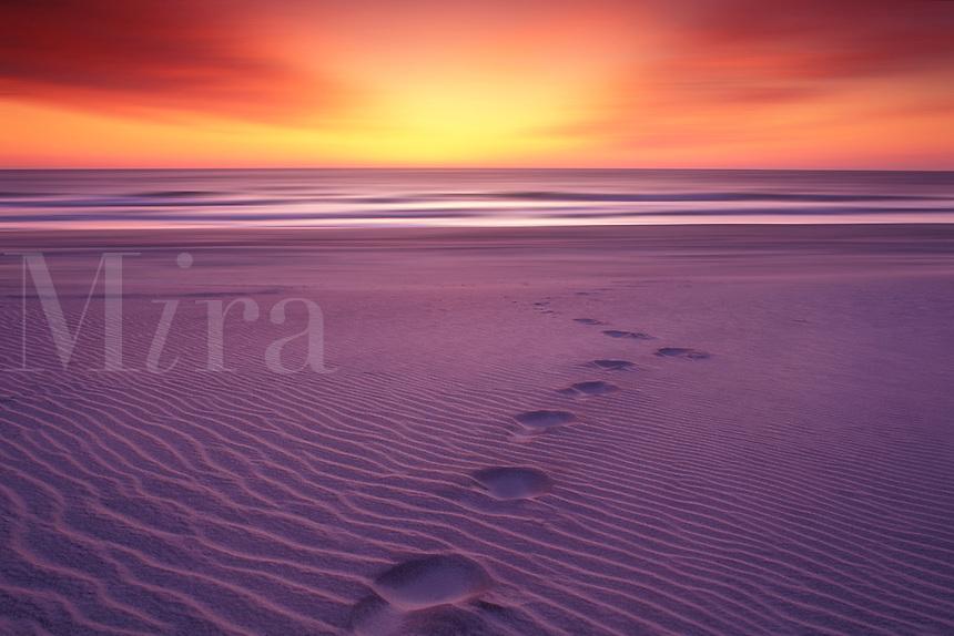 Sunrise. Footprints on a Beach. Cape Hatteras National Seashore. North Carolina