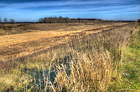 Late fall at The W. Darcy McKeough Floodway.
