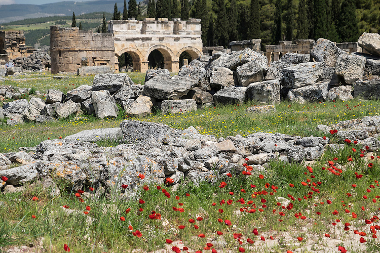 Red poppies form the foreground among the Roman ruins of Hierapolis.