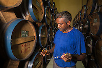 France, &icirc;le de la R&eacute;union, c&ocirc;te nord est, Saint Andr&eacute;, cave de rhum de la distillerie Savanna - Le maitre de chai dans le chai de vieillissement // France, Ile de la Reunion (French overseas department), north east coast, Saint Andre, rhum cellar of Savanna distillery  , cellar master in the maturation storehouse<br /> AUTO n&deg; 2014-116