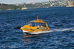 Water taxi dans la baie de  Sydney