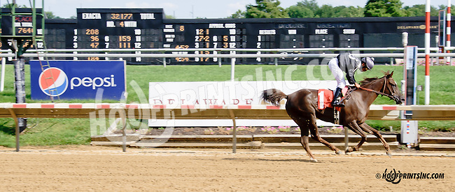 Miss Paradise winning at Delaware Park on 7/30/14