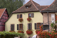 winery domaine remy gresser andlau alsace france