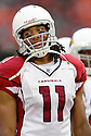 Larry Fitzgerald, of the Arizona Cardinals, in action during thier game against the San Francisco 49ers on December 4, 2005..Rob Holt / SportPics..Cardinals win 17-10