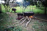 Tomatenwerden eingeweckt  in einer meschetischen Gemeinde im Dorf Ianeti in  Georgien. / Canning tomatoes in a Meskhetian community of Ianeti village, Georgia.